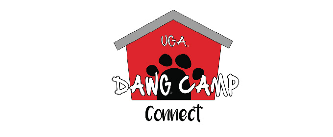 Dawg Camp Connect 2019
